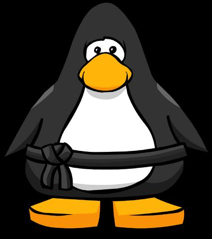 File:Black Belt on a Player Card.png