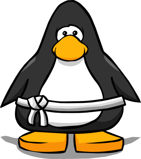 File:White Belt from a Player Card.PNG