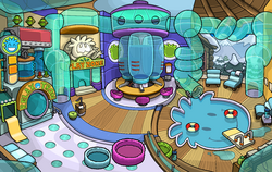 Puffle Party 2013 Puffle Play Zone
