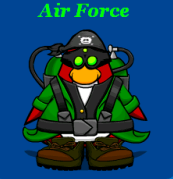 File:Airforcemembernugget.png