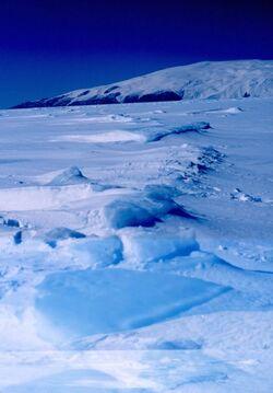 417px-Ross Island 1999