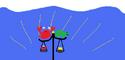 Turtlyflag