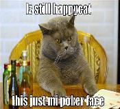 PokerFaceHappyCat