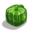 Square Melon-icon