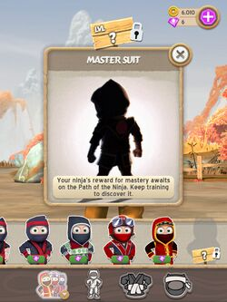 Image master suit