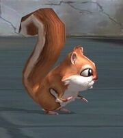 Trainingsquirrel
