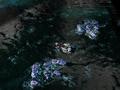 Escort Fleet.png