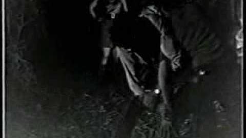 Sexo e Sangue na Trilha do Tesouro (Zé do Caixão Coffin Joe)