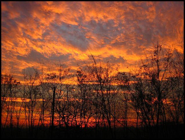 File:Dawn-6960.jpg
