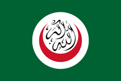 Flag of OIC