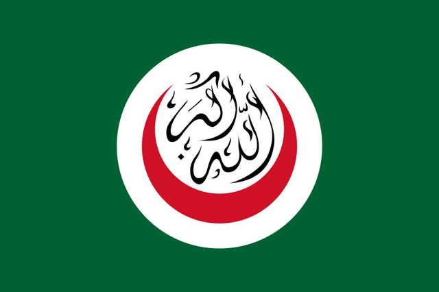 File:Flag of OIC.png
