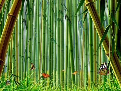 Bamboo-futon-cover glamour