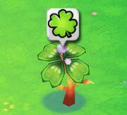 Clovertree1harvest