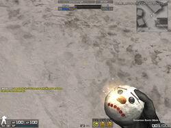 Combat-Arms SBF3