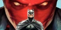 DC COMICS: Batman Family (Batman Under The Red Hood)