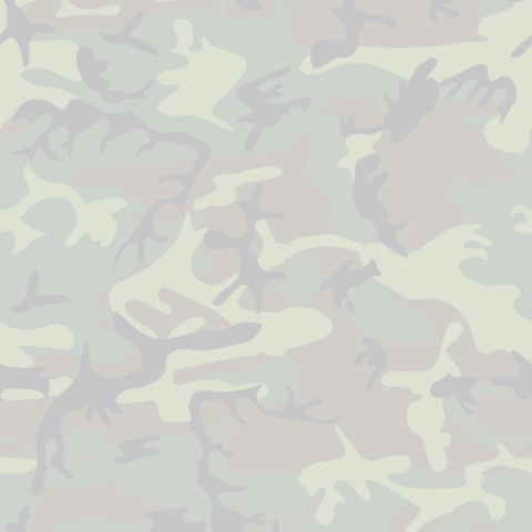 File:Camouflage.png