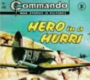Hero In A Hurri