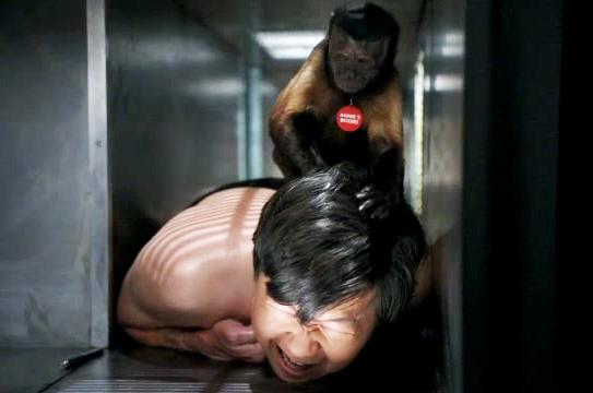 File:Monkey beats up Chang.jpg