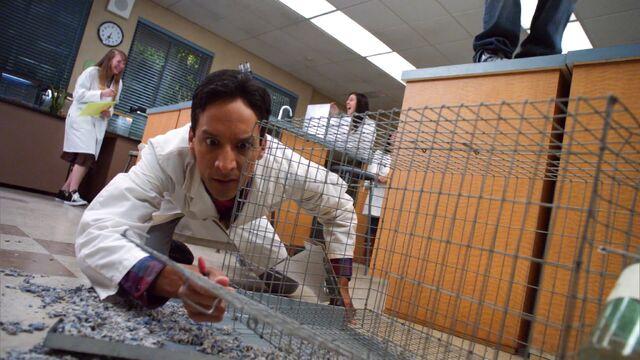 File:1x10 Fievel escaped .jpg