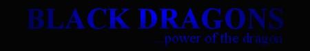 Black Dragons Banner Year3