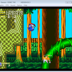 Sonic Jumped through a loop (may not appear to be, but it happened.)