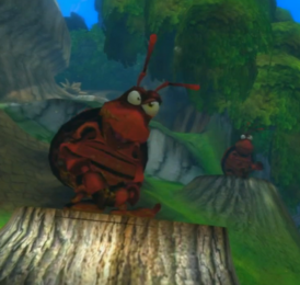 Red dung beetle