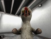 Imagescp-173