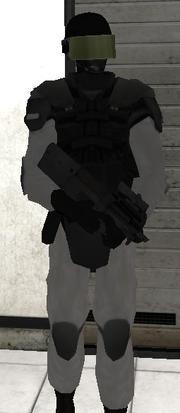 Escort Guard
