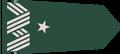 General brigada.png