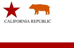 Bear flag digital
