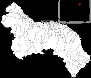 Nieuw Amsterdam municipality map