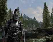 Indand Imperial Guard knight