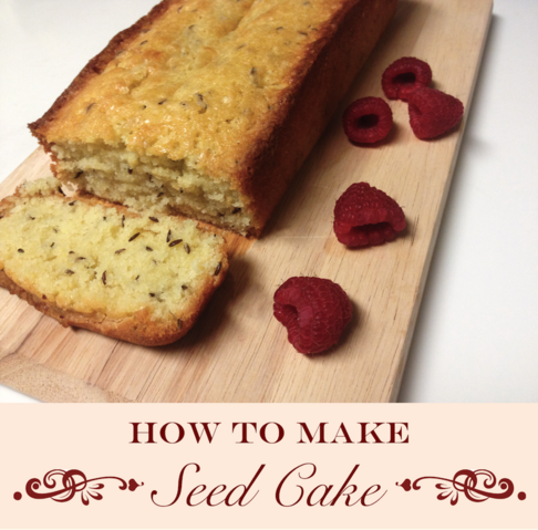 File:Seedcake 1.png