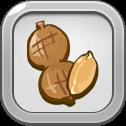 Roasted Fresh Peanut