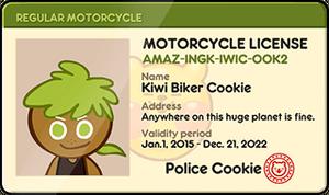 Kiwi Biker Driver's License