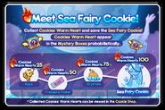 Sea Fairy newsletter