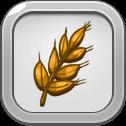 Good Year's Wheat Harvest