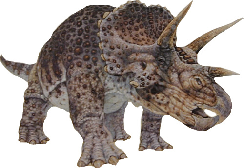 File:The-Triceratops-Never-Existed-It-Was-Actually-a-Young-Version-Of-Another-Dinosaur-Dinosaur e-cnt 0.jpg