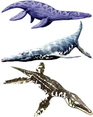 File:Pliosaurs.jpg