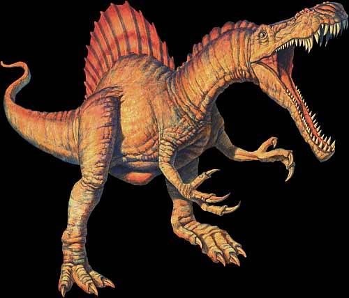 File:Spinosauruuus.jpg