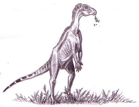 Zephyrosaurus | Cool Dino Facts Wiki | FANDOM powered by Wikia