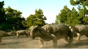 Lystrosaurus6