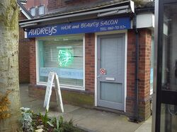 Audreys salon