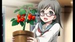 Emi-tomato