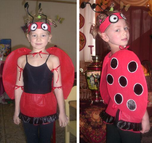 File:Ladybug-pashka.jpg
