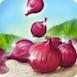File:OnionsRibbon.png