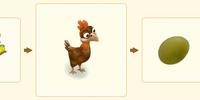 Olive Egger Chicken