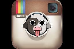 Preview-2016 instagram logo