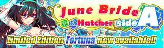 June Bride Hatcher side A Banner 2