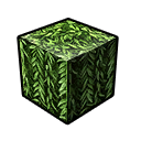 Leaf Weepwood